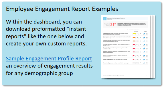 employee engagement report examples